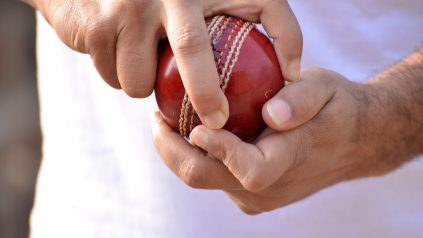 cricket slang
