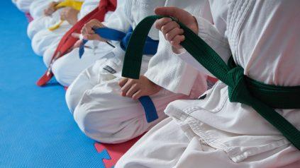martial arts belts